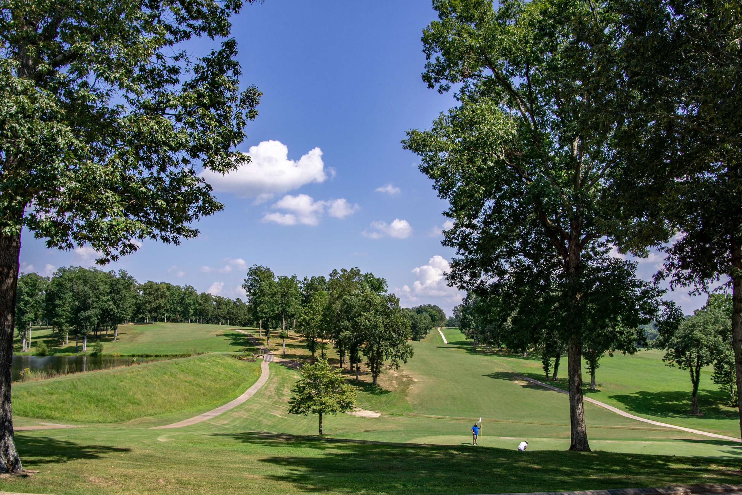 Dixie Oaks Golf Club Summertown TN Real Estate Photographer Pro -3.jpg