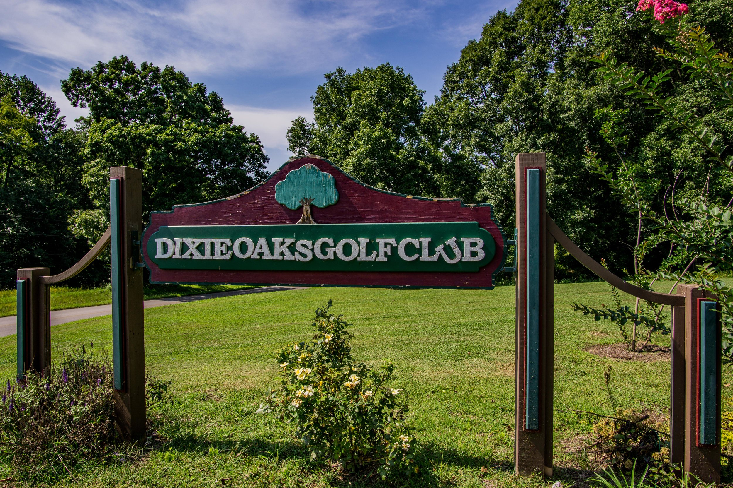 Dixie Oaks Golf Club Summertown TN Real Estate Photographer Pro -14.jpg