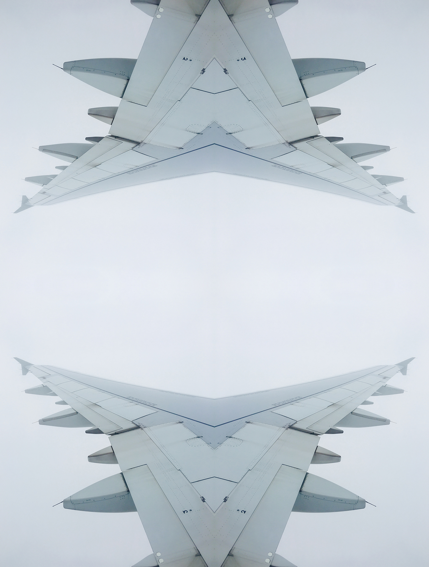 wing 5.2.jpg