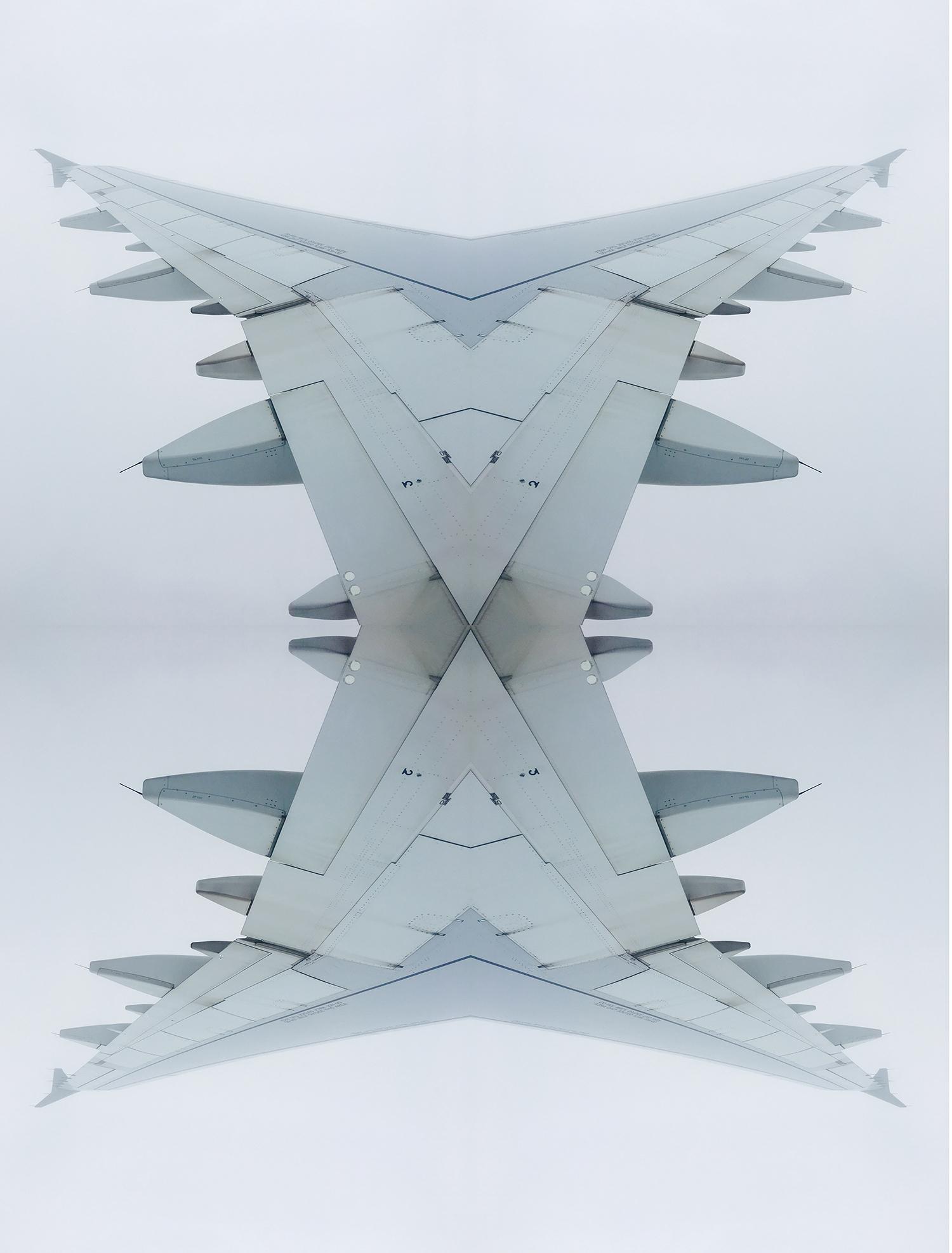 wing1.2.jpg