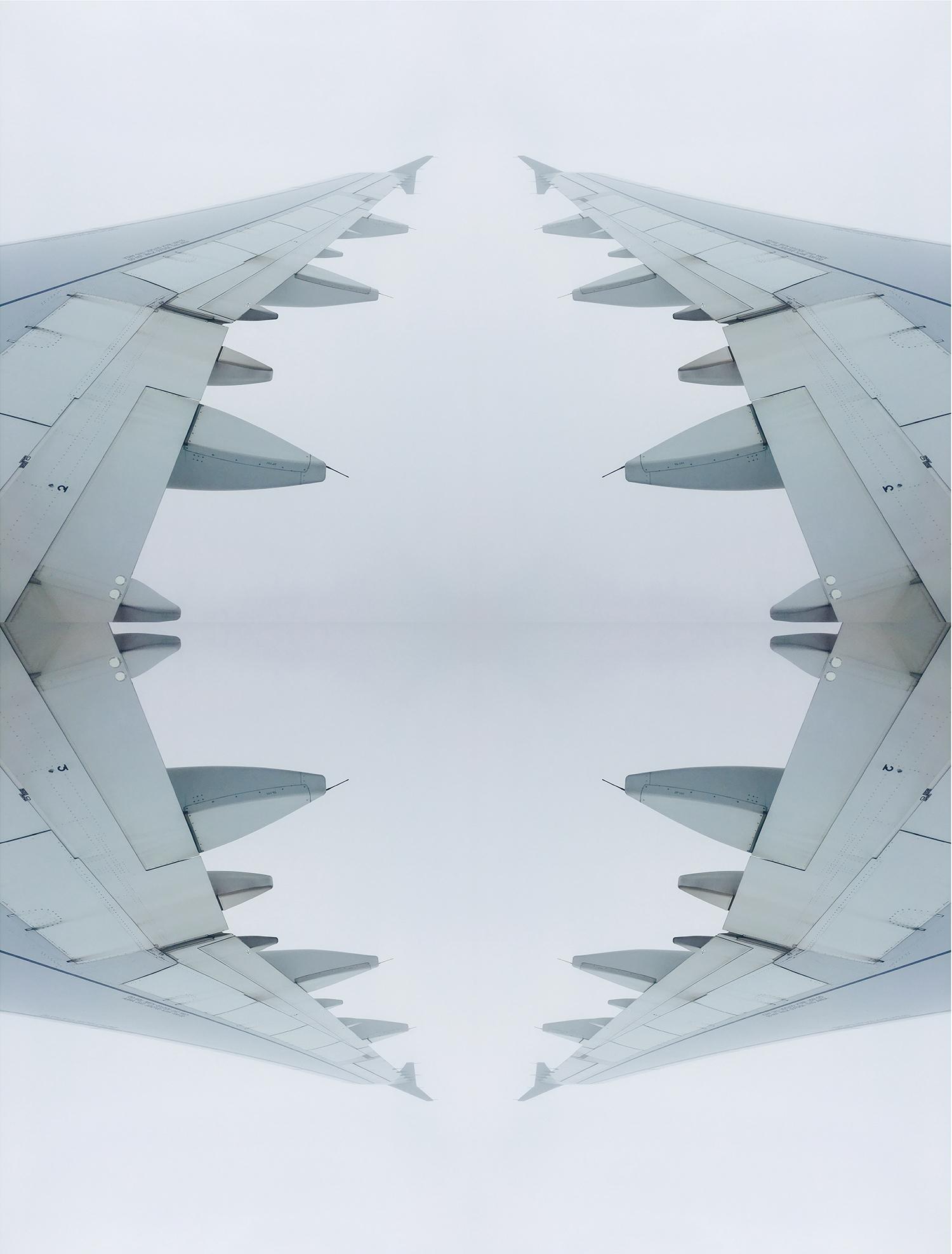 wing2.2..jpg