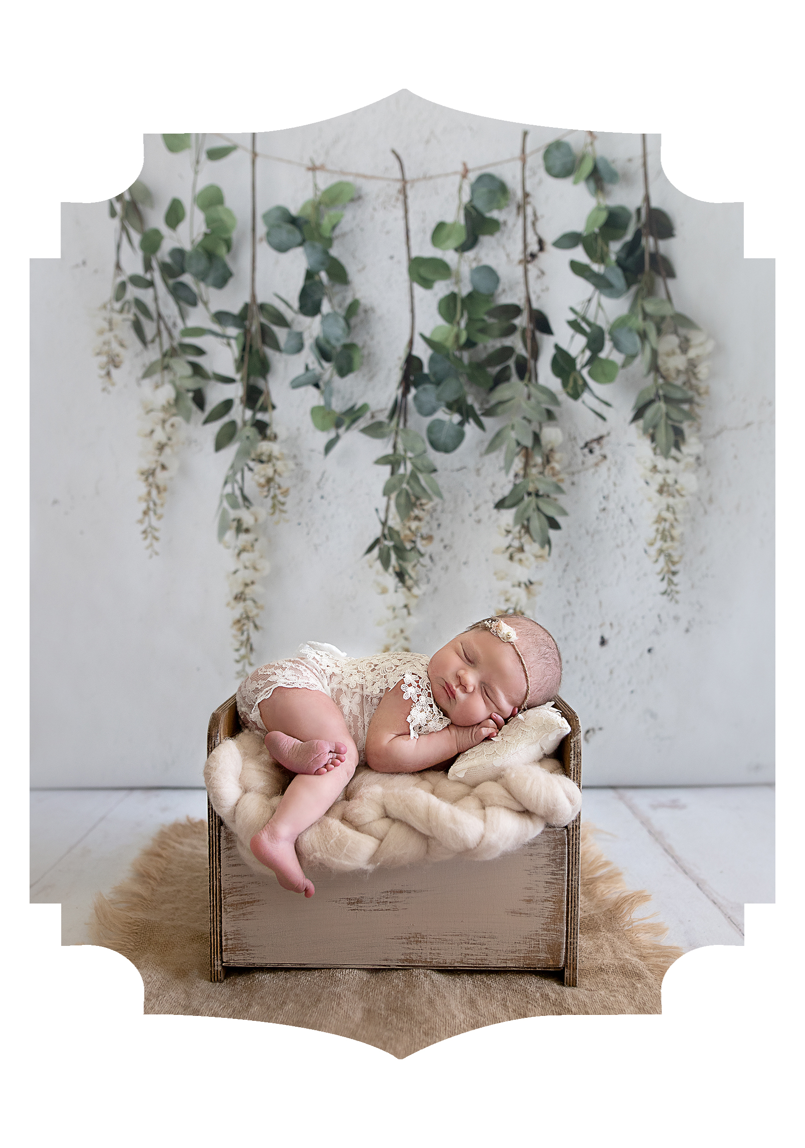 Studio and In-Home Newborn Sessions -