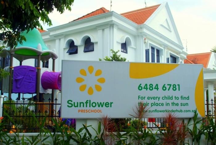 Sunflower Kinderhub & Sacara (3).jpg