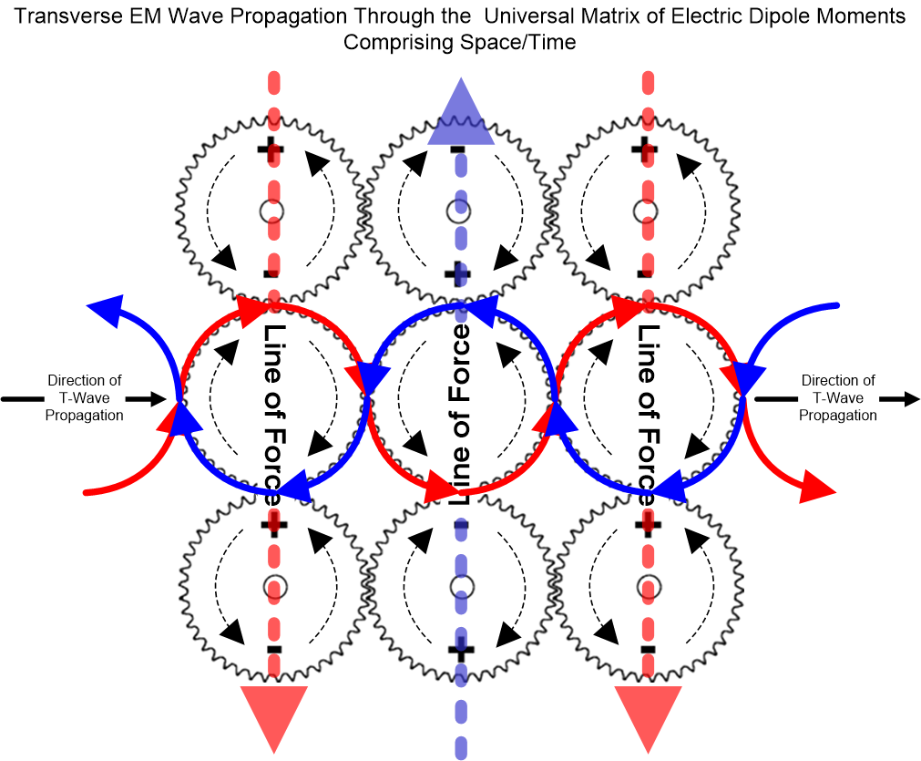 """The interlocking force between one electric dipole moments and the next is not as """"infinite"""" as it may seem from the illustration above, but rather, the force is """"limited"""" in that each dipole moment is able to """"slip"""" a bit with respect to any adjoining one. This """"slippage"""" is due to the inertial mass of the dipole moment and the energy of its rotation. Although, seeing that the dipole moment has no fundamental mass of its own, its inertial energy is very small as it is a function of the slight tension of all nearby dipole moments acting upon it. Therefore, in a very short period of time the dipole moment can easily change the axis of its rotation and/or slow down to track an incoming Transverse EM wave... or even come to a complete stop in order to align directly at a charged particle of mass.    Nevertheless, there will always be a certain amount of delay or """"lag-time"""" involved in the process of a dipole moment changing its momentum. As a result, the minimum of that lag-time represents the maximum speed at which transverse dielectric energy can be relayed through the vacuum of space/time, and therefore becomes the limiting threshold for the Speed of Light. Please note that the minimum lag-time / maximum speed of light is in the case when there are no other nearby particles of mass, such as that of a vacuum.    In fact, the above only holds true for the vacuum. When other particles of mass are present, their effect is to warp time and thereby reduce the space between themselves as well as condensing the dipole moments closer together. Essentially, space, time and matter become """"condensed"""" when compared to the conditions of a vacuum. As a result, some (if not most) of these nearer particles will have an electrical charge that will then create even greater tension on all electric dipole moments in the vicinity. That greater tension will then result in greater inertial mass of the dipole moments, thus increasing their lag-time. As a result, the speed at which transvers"""