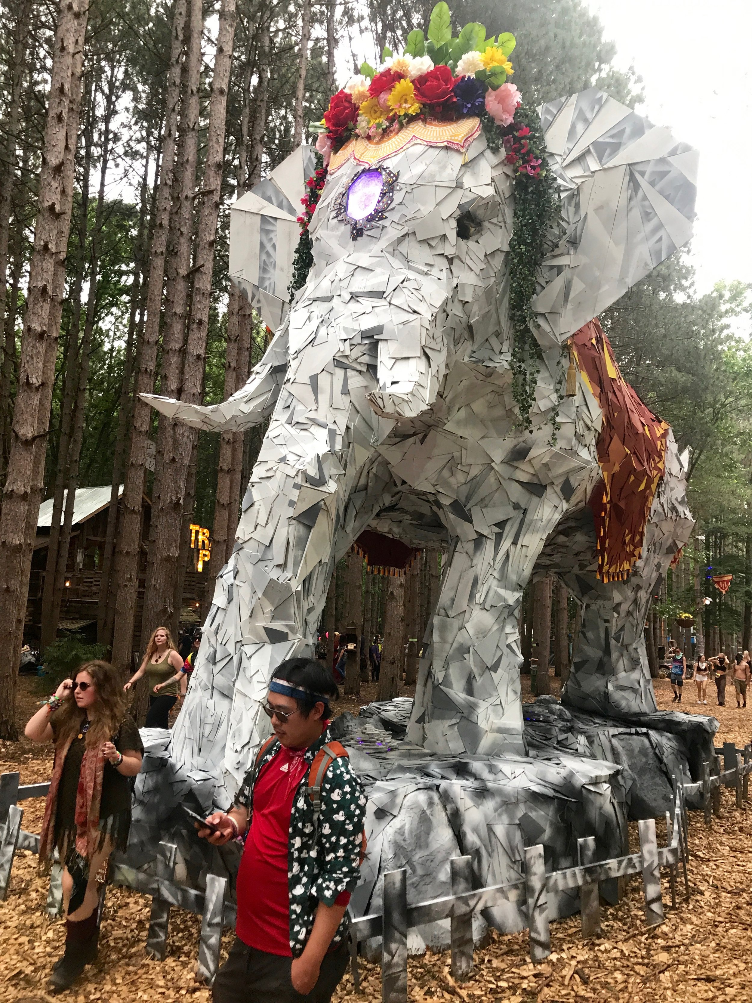 Elephant installation owning the forest