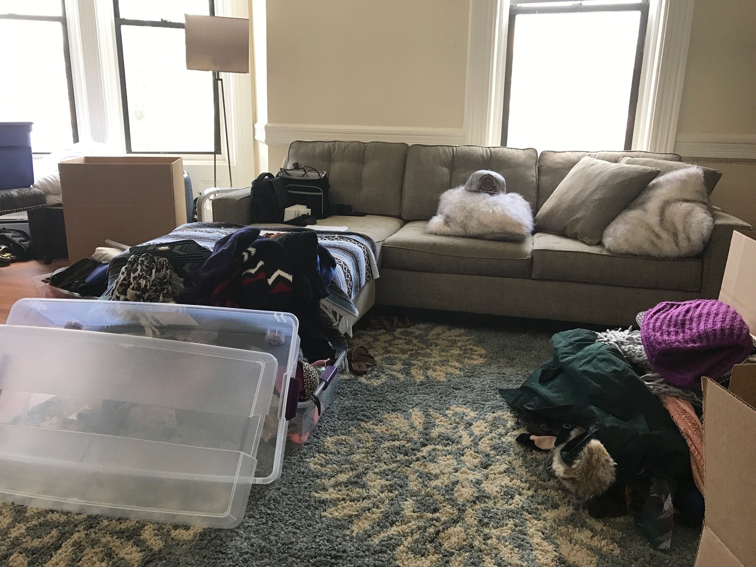 Packing, Planning, and More Packing: A photo of our living room at the present moment.