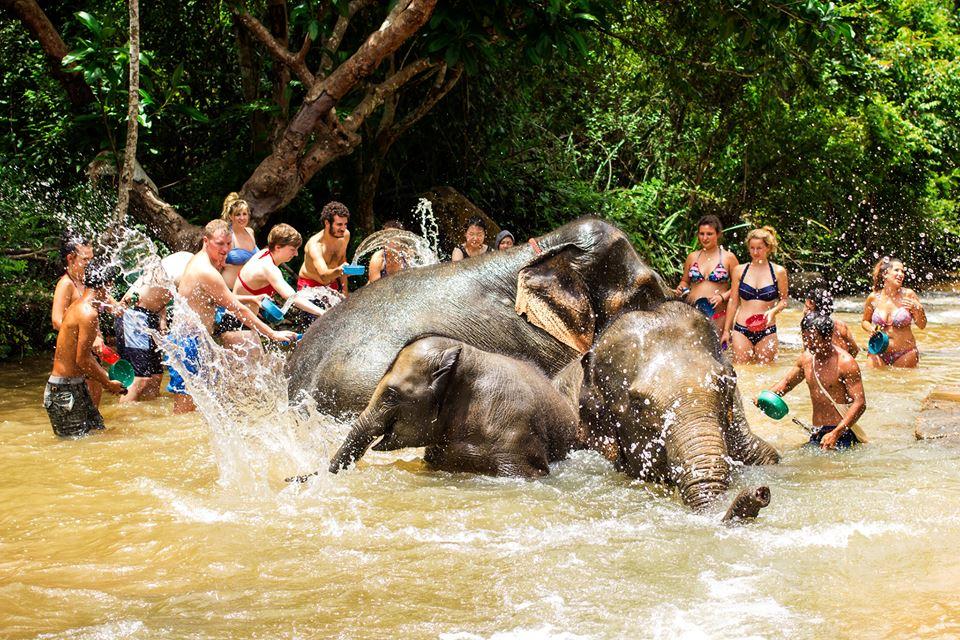 Bathing elephants is so much fun! Photo Credit: The Elephant Jungle Sanctuary