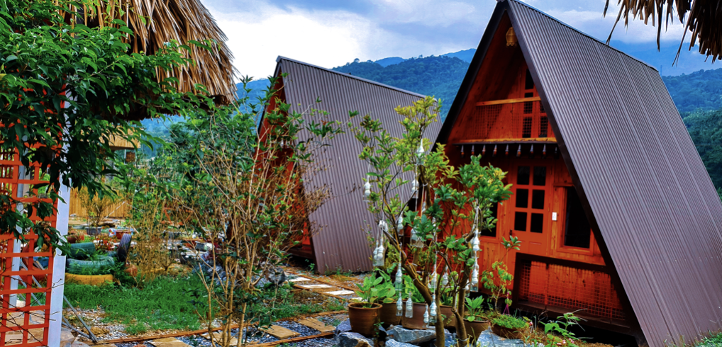 The bungalows and houses on stilts in nature at Maison Teahouse Homestay are divine!