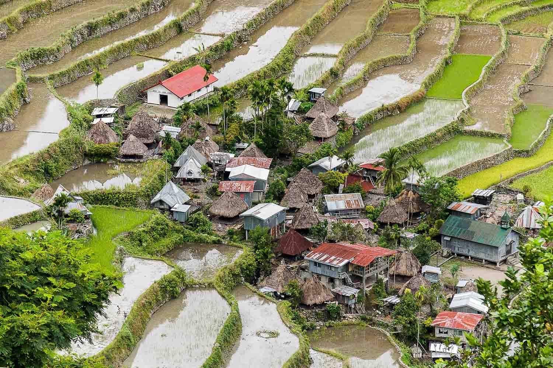 Batad Rice Terraces, Phillipines, 9 Nov 2008.