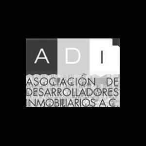 1.ADI.png