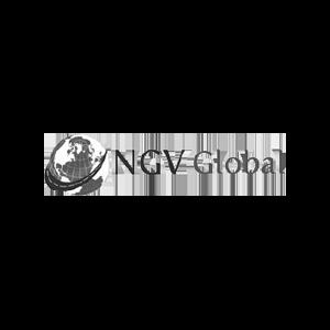 15.NGV.png