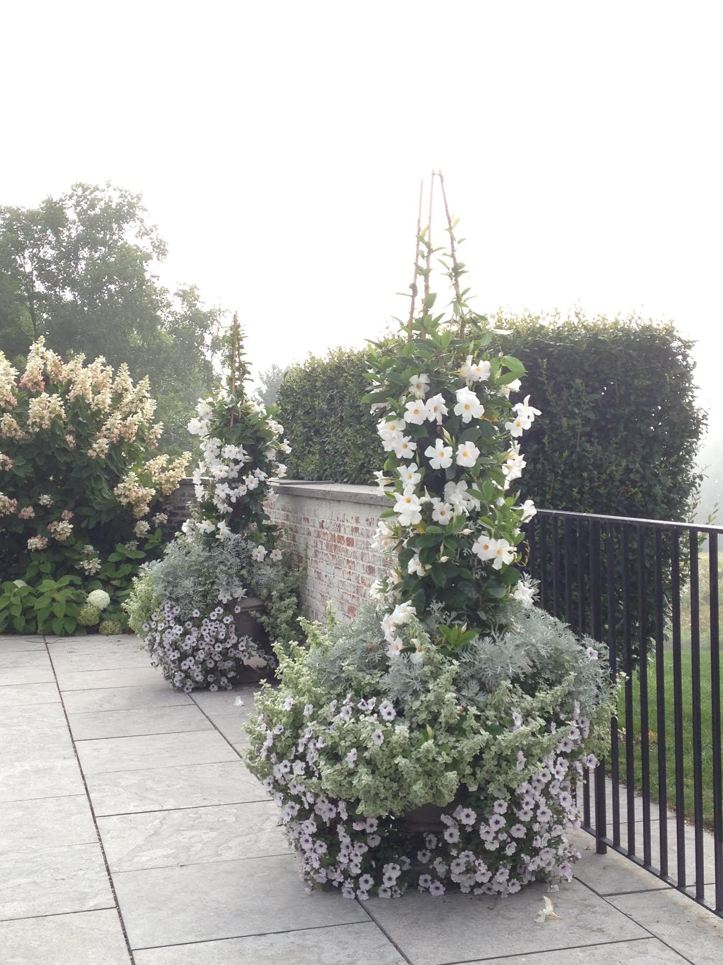 flower towers.jpg