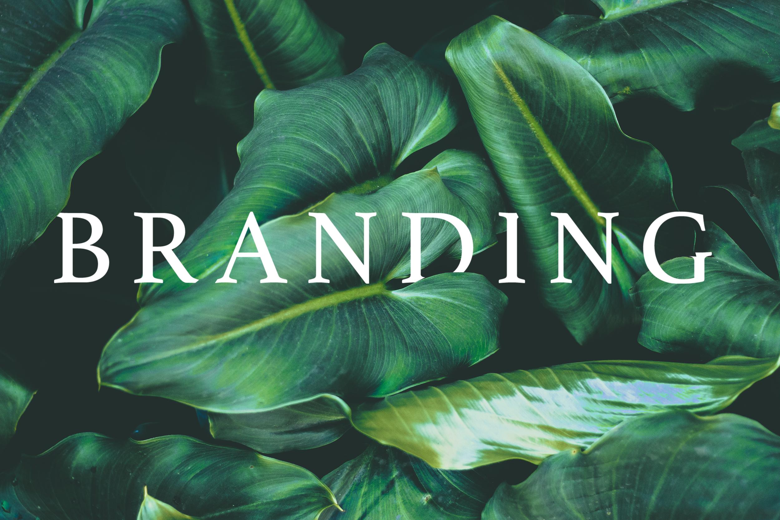 Branding Hidden Letters.png