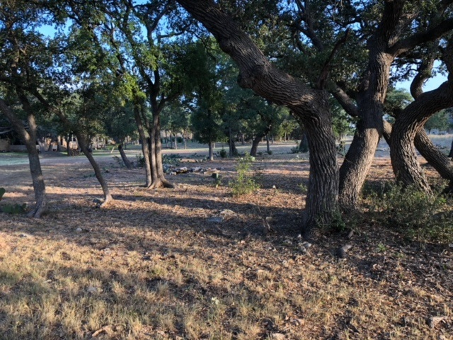 100 Vista Lane - Over an Acre lot located in the gated community of Gabriels Grove in Georgetown, TX. This lot has close to 70 mature Oak Trees outside the building area. (Under contract, see our Facebook page to follow the process!)
