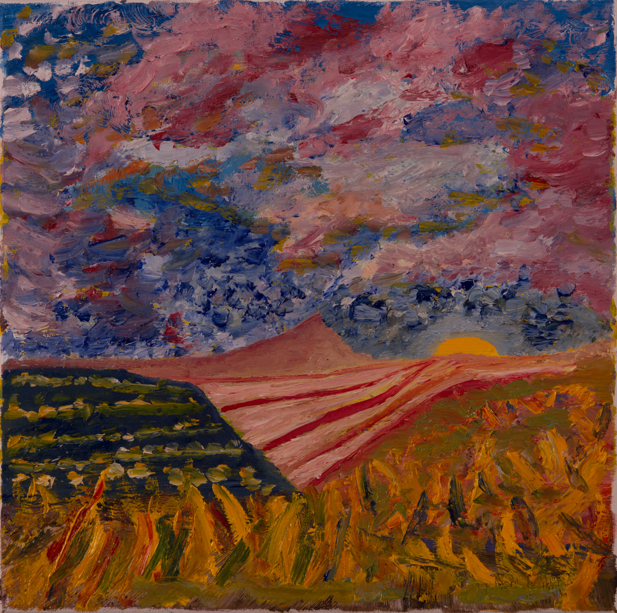 American Prairie: Hope  by Doug Distaso