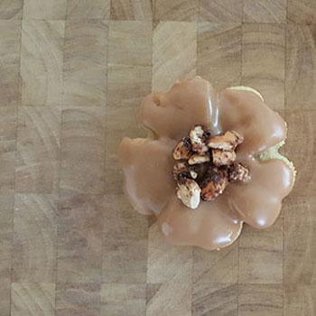 Pavona Cashew Maple - .