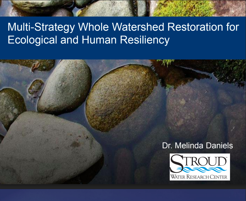 Multi-Strategy Whole Watershed Restoration for Ecological and Human Resiliency