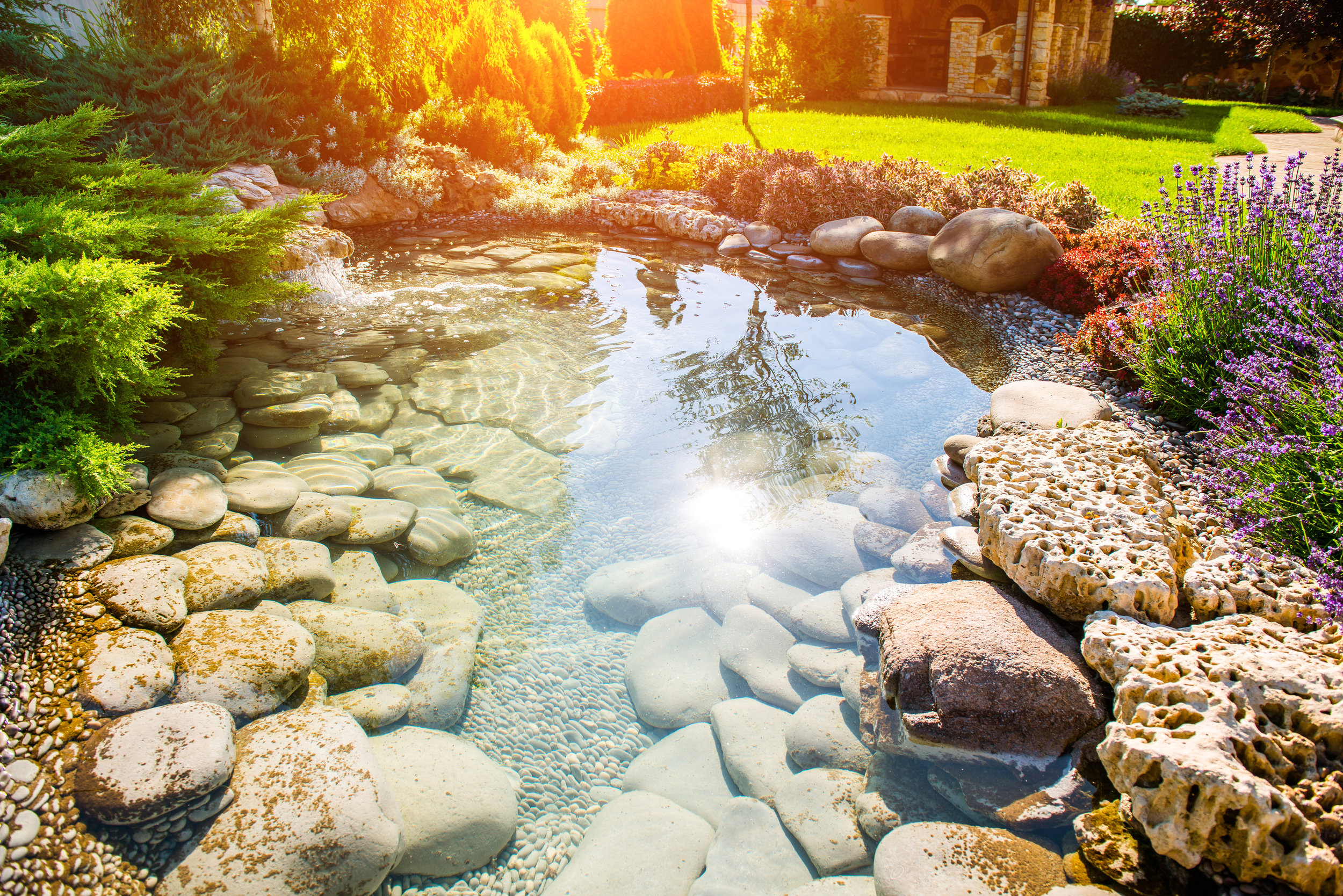 4 Tips for Maintaining Healthy Ponds in Lancaster, PA