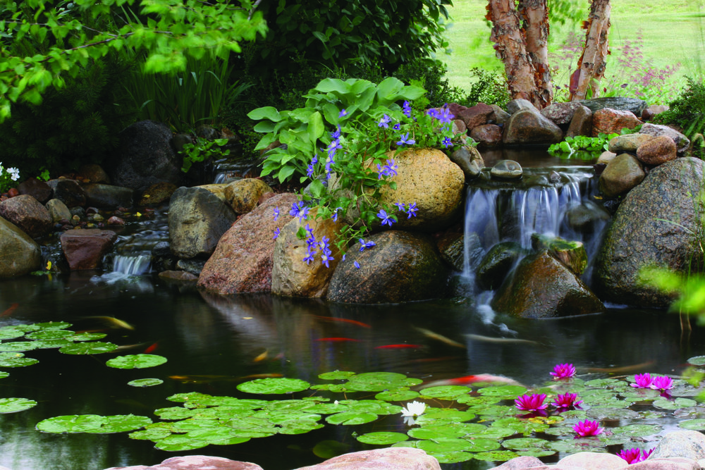 How a Custom Aquascape Water Feature can Improve Any Lancaster, PA, Outdoor Living Space 2.jpg