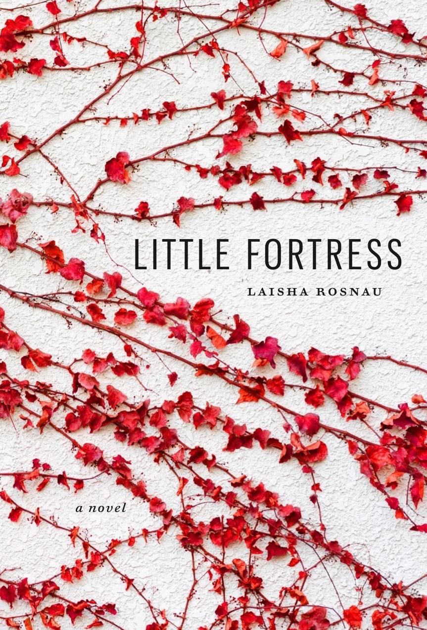 Little Fortress   Novel, coming September 2019!
