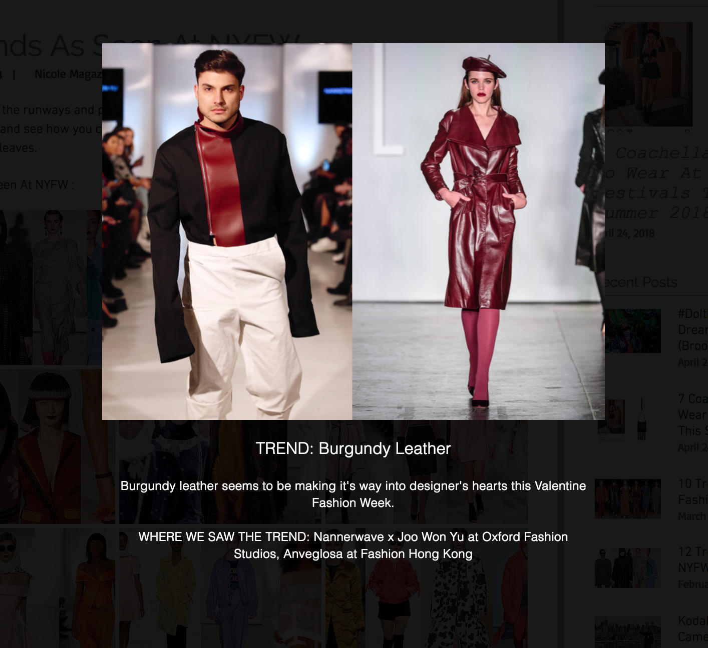 nicole magazine - http://www.nicolemagazine.com/single-post/2018/02/20/12-Trends-As-Seen-At-NYFW