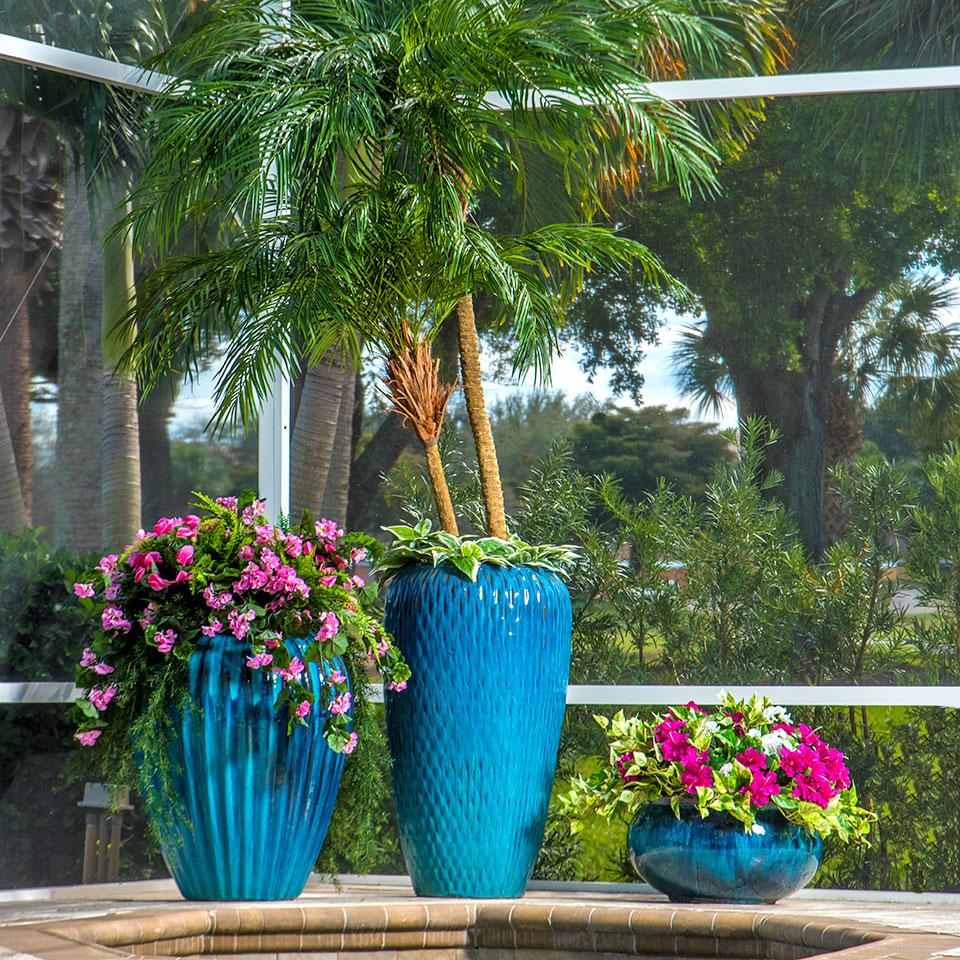 POOL PLANTING FOR A FLORIDA LANAI