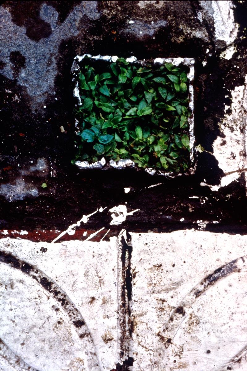 04 Taipei 1996.jpg