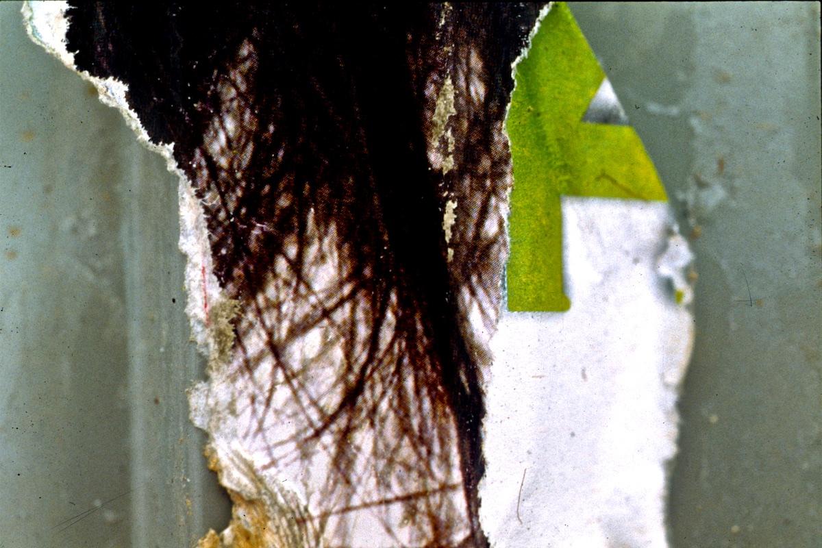 115 Tsim Sha Tsui, H.K.  2004.jpg