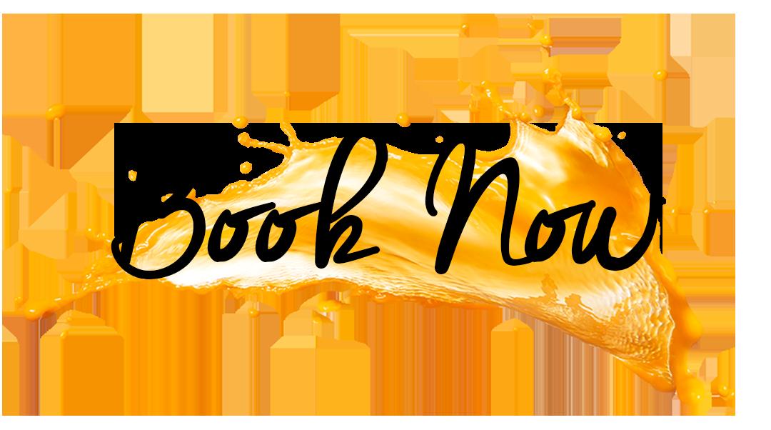 Book Noe Orange graphic.png