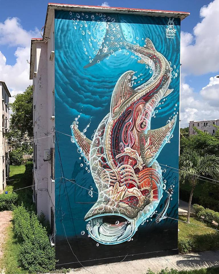 pangeaseed: sea walls | nychos