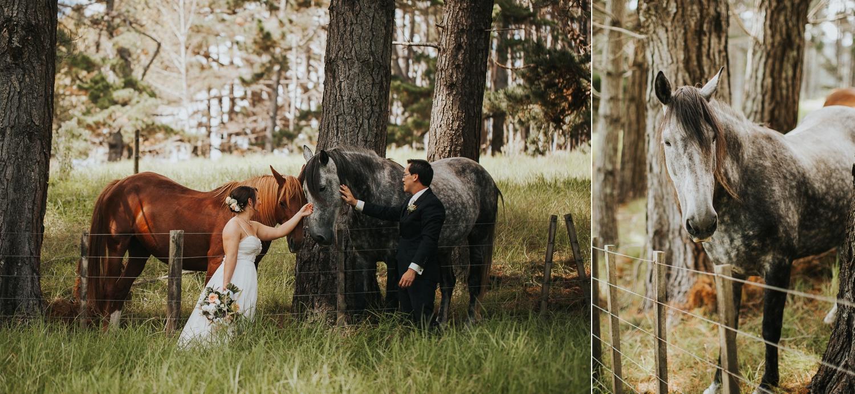 katie shane west auckland cassels wedding-51.JPG