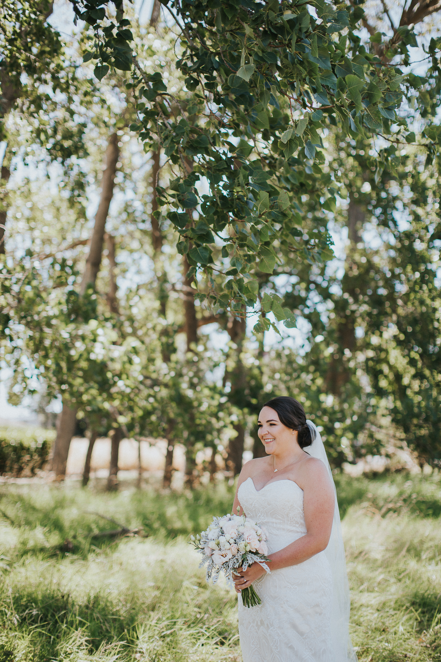 nicola gareth abbeville wedding photographer-71.jpg