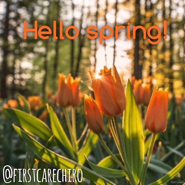 Hello spring! #tulips #spring #bringonthewarmweather #oshkoshchiropractor