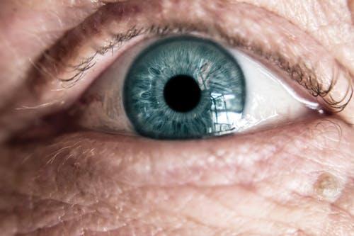 Ophthalmology/眼科