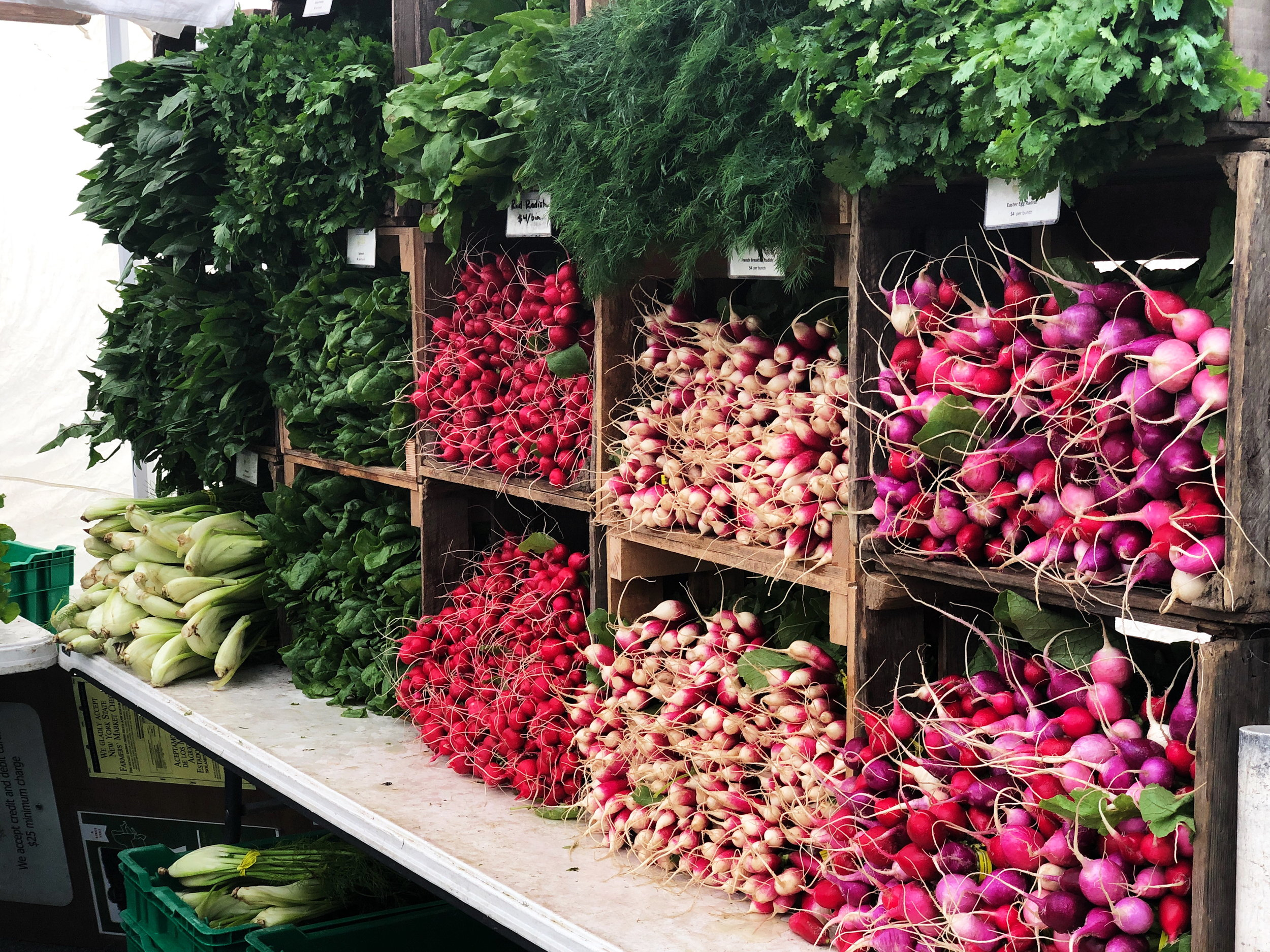 My favorite market in Lyon and one of my favorite veggies…radishes bien sur!