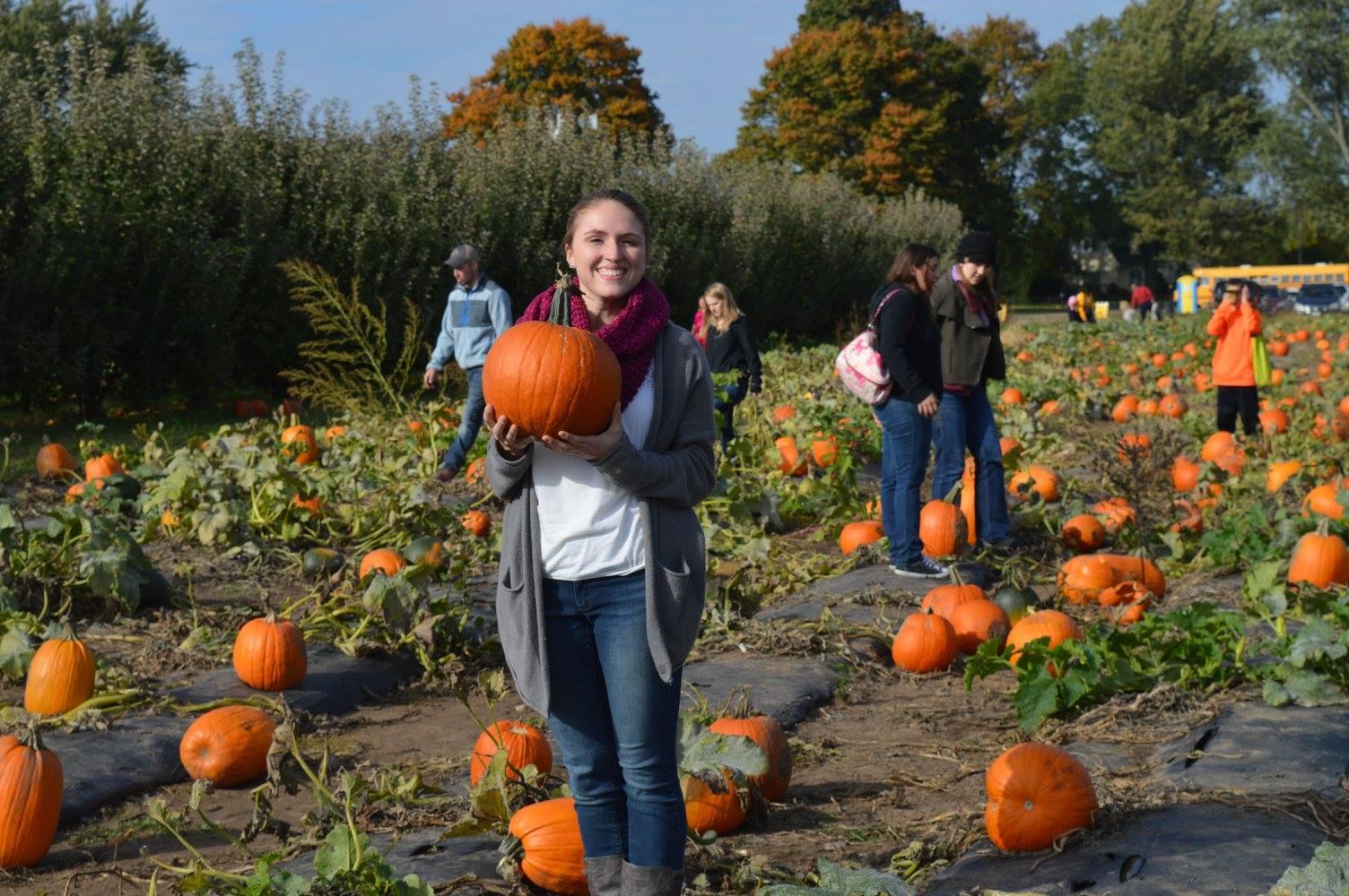 IC pumpkins.jpg