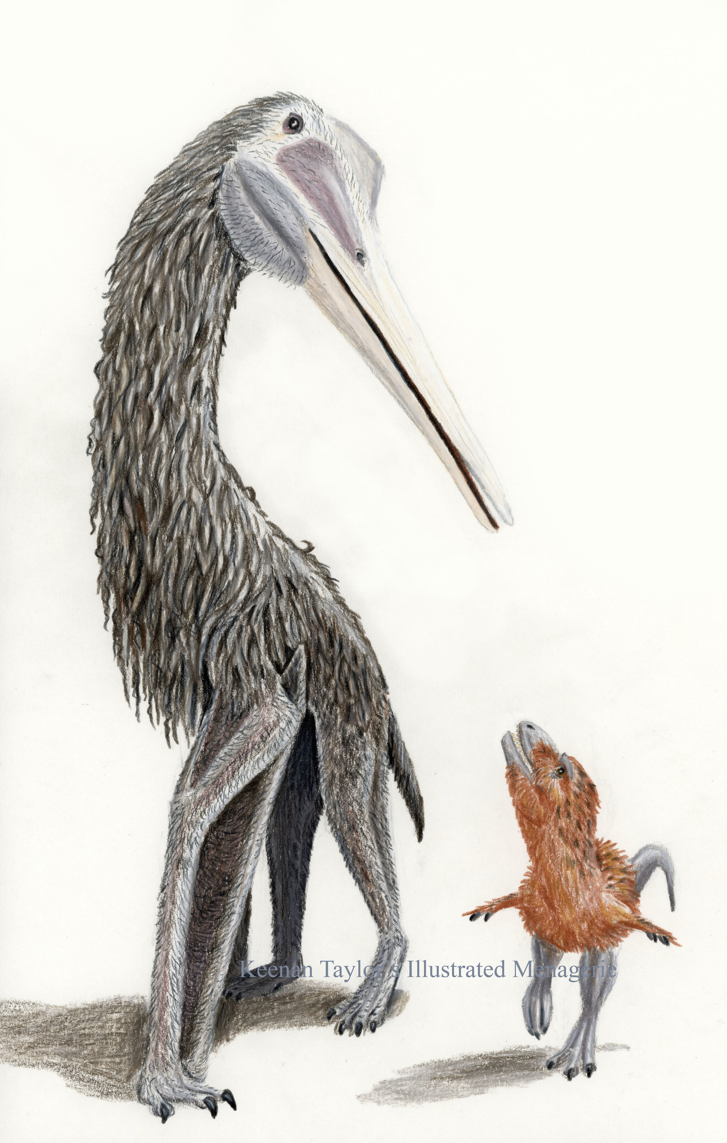 Quetzalcoatlus northropi and young Tyrannosaurus rex