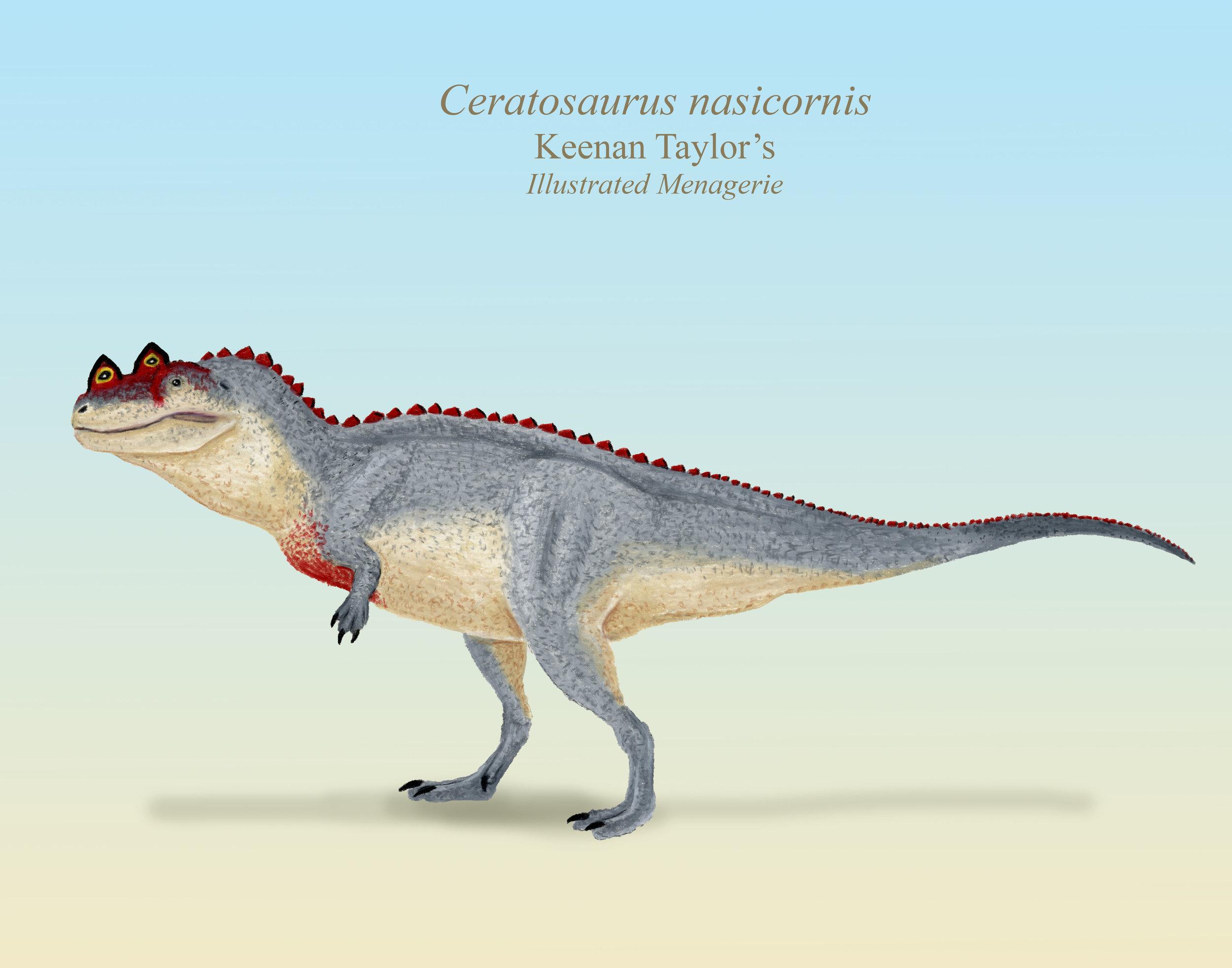 Ceratosaurus lateral