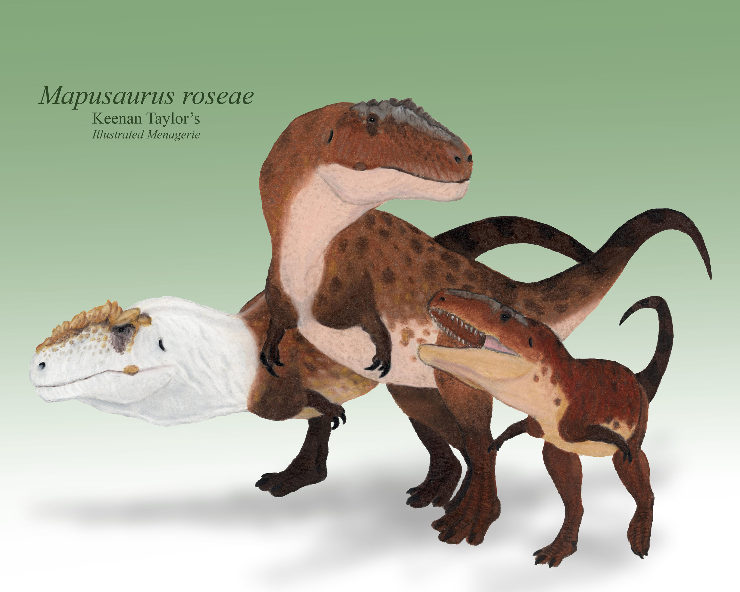 Mapusaurus family