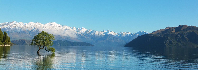 Neuseeland-lake-trree-mountains.jpg
