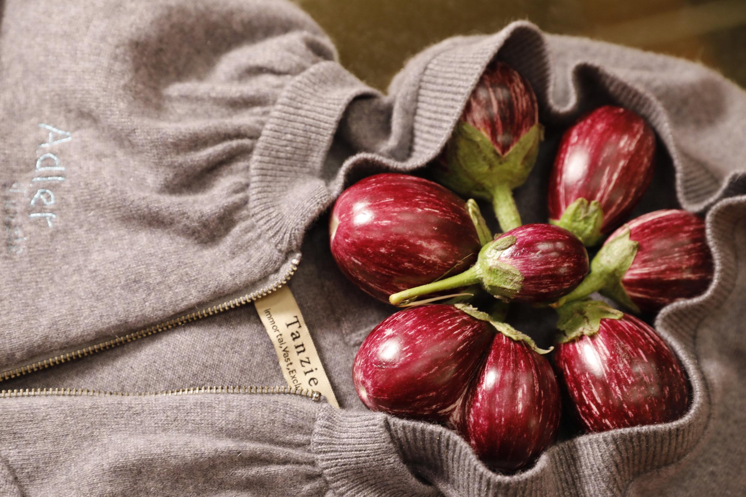 fruit in sweater.JPG