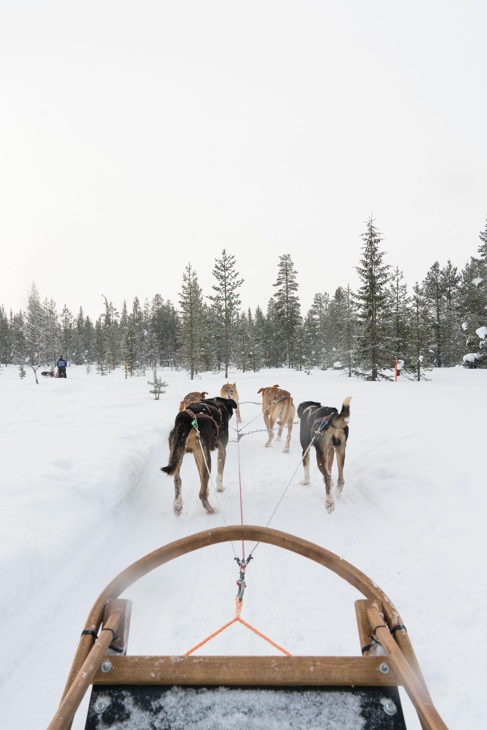 the_getaway_edit_finland_kakslauttanen_arctic_resort-6.jpg