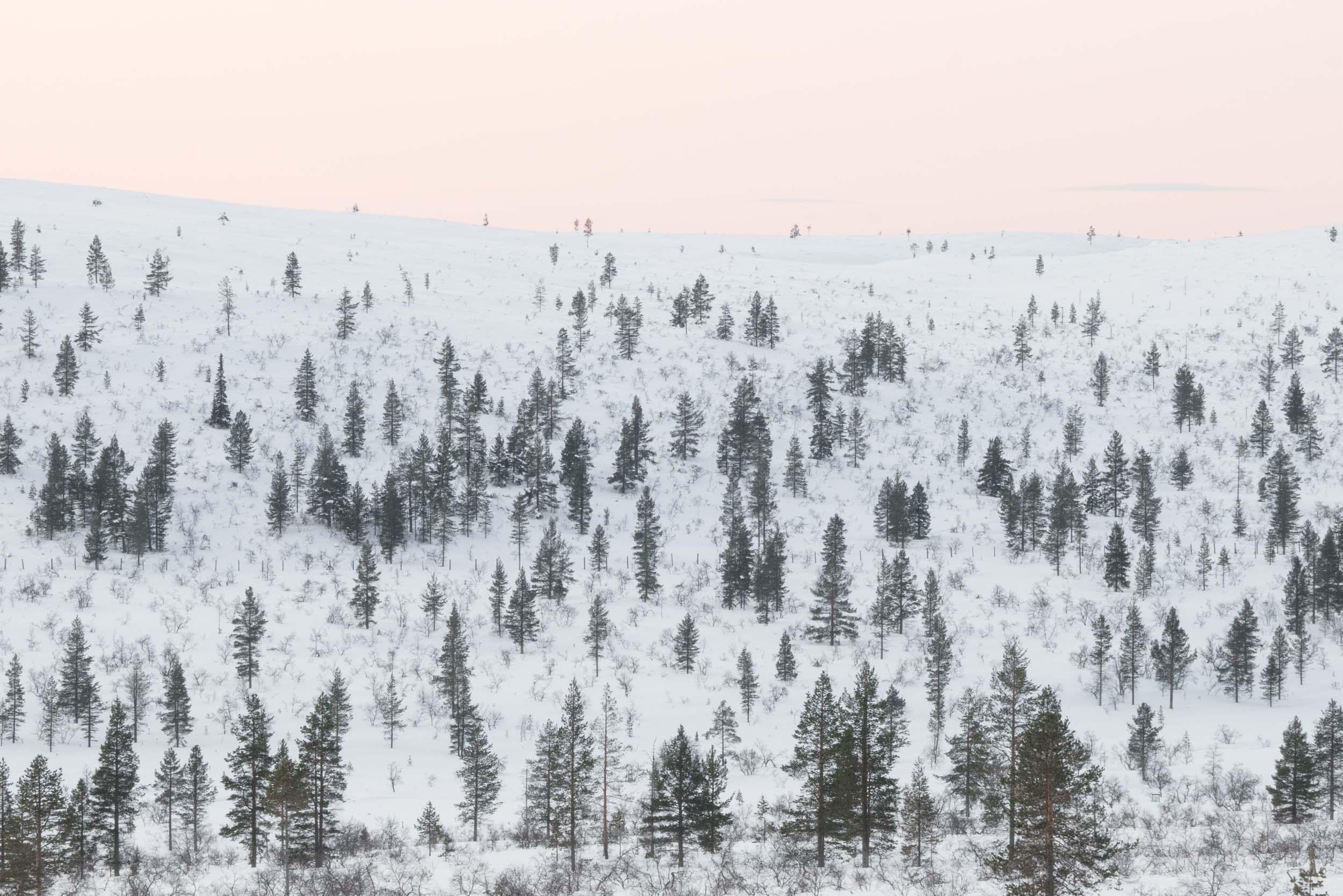 the_getaway_edit_finland_kakslauttanen_arctic_resort-10.jpg
