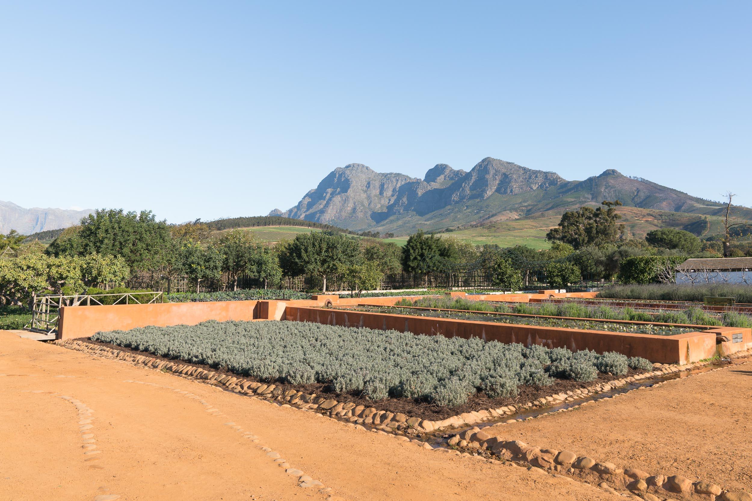 the_getaway_edit_south_africa_cape_winelands_babylonstoren-8.jpg