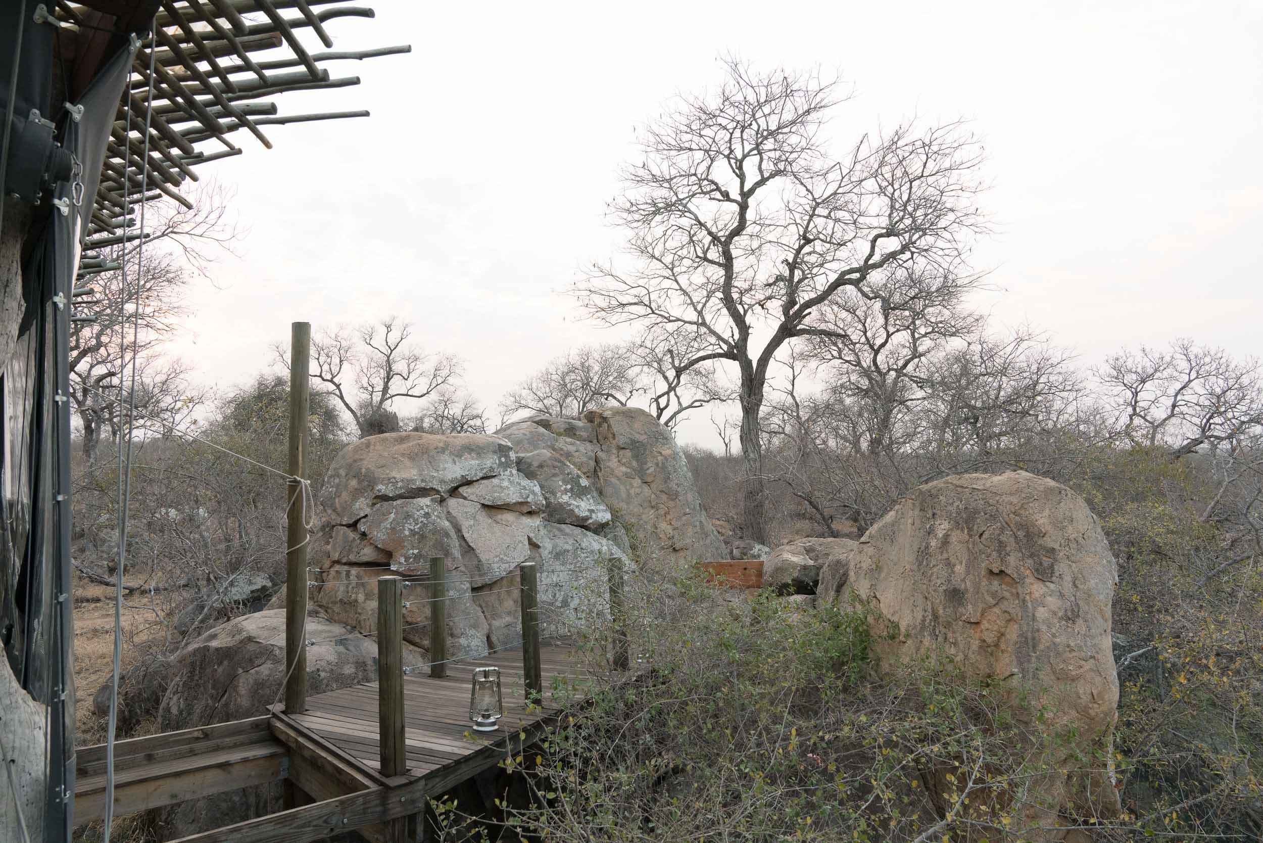 the_getaway_edit_south_africa_safari_lion_sands_game_reserve-17.jpg