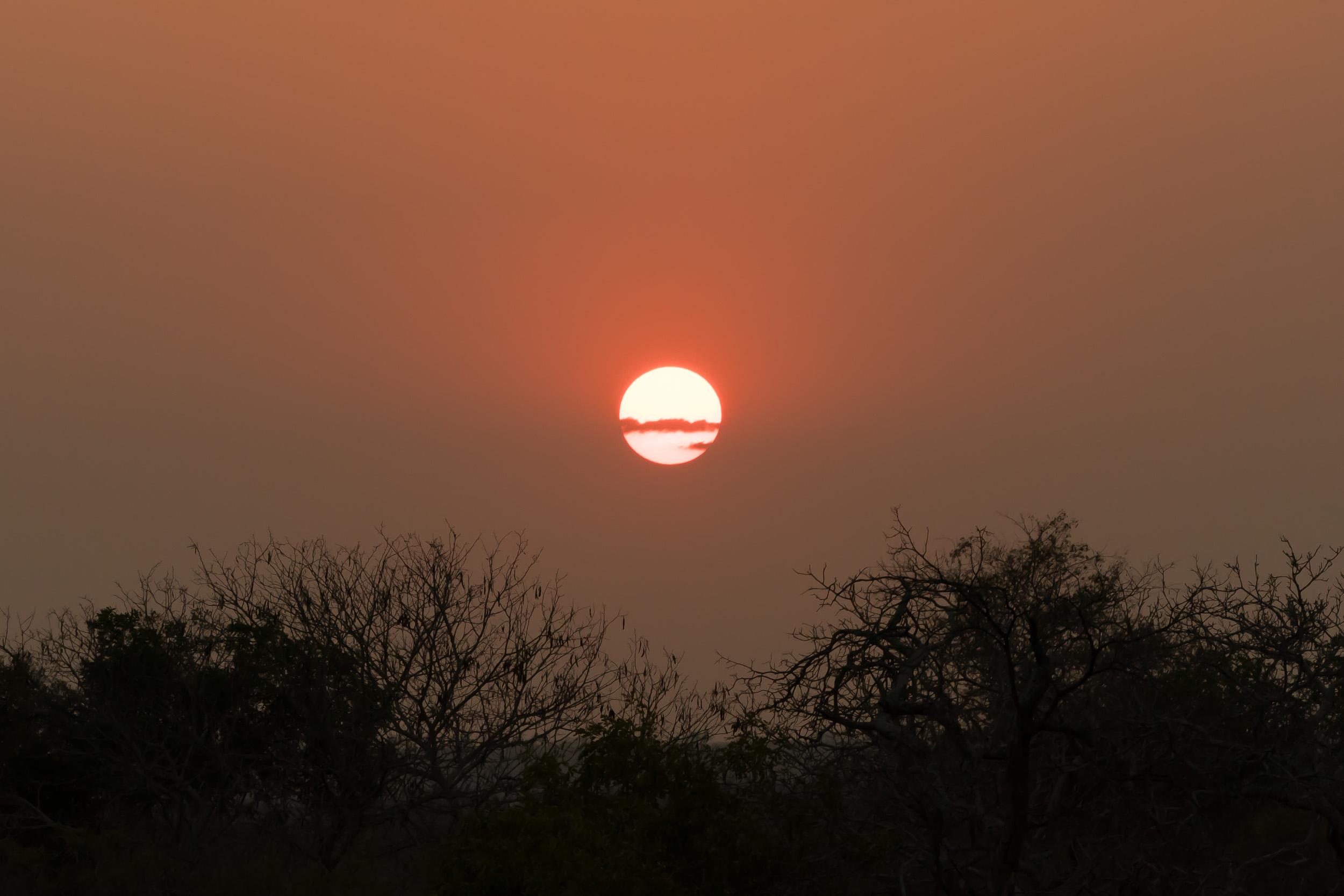 the_getaway_edit_south_africa_safari_lion_sands_game_reserve-13.jpg