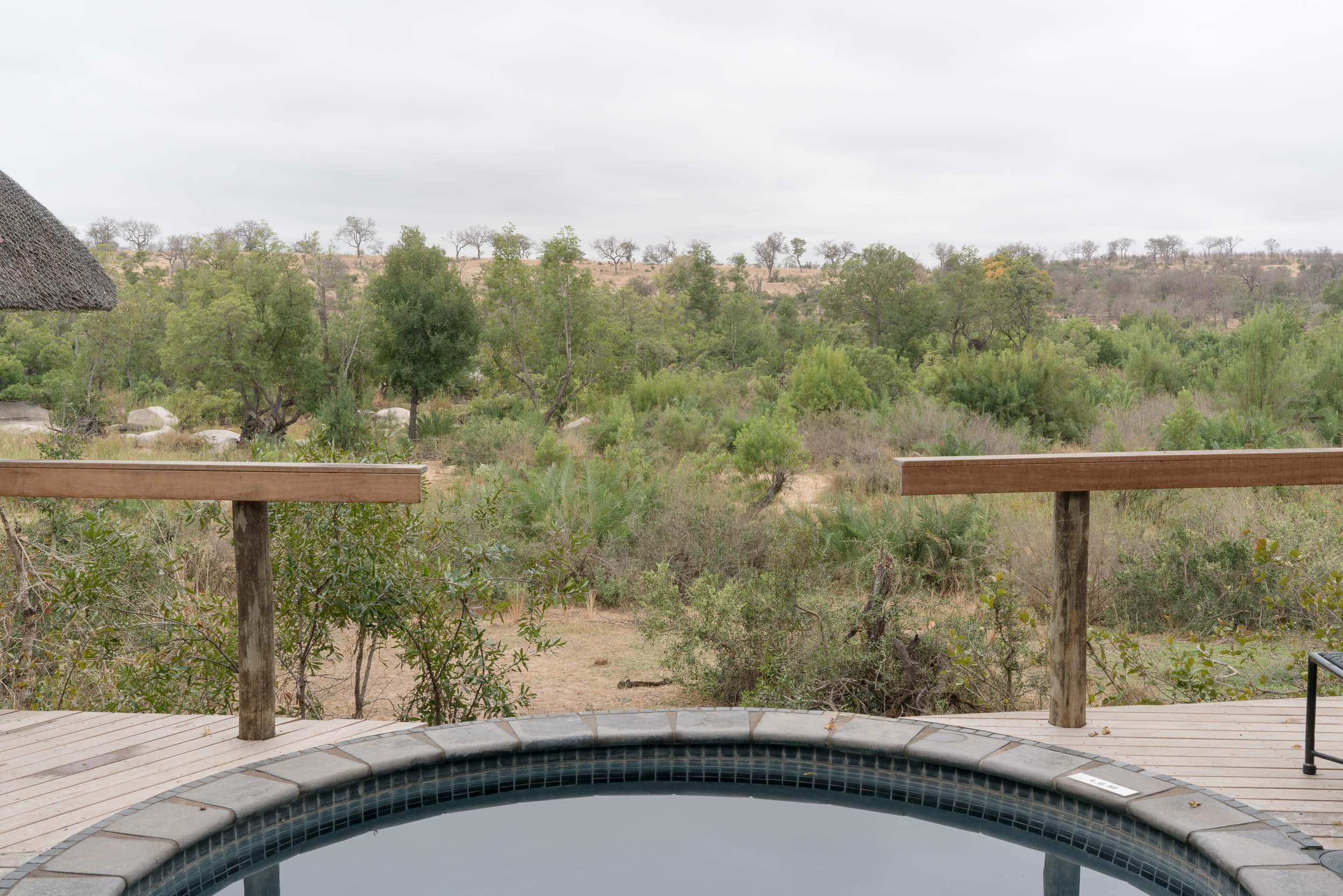 the_getaway_edit_south_africa_safari_londolozi_game_reserve-2.jpg