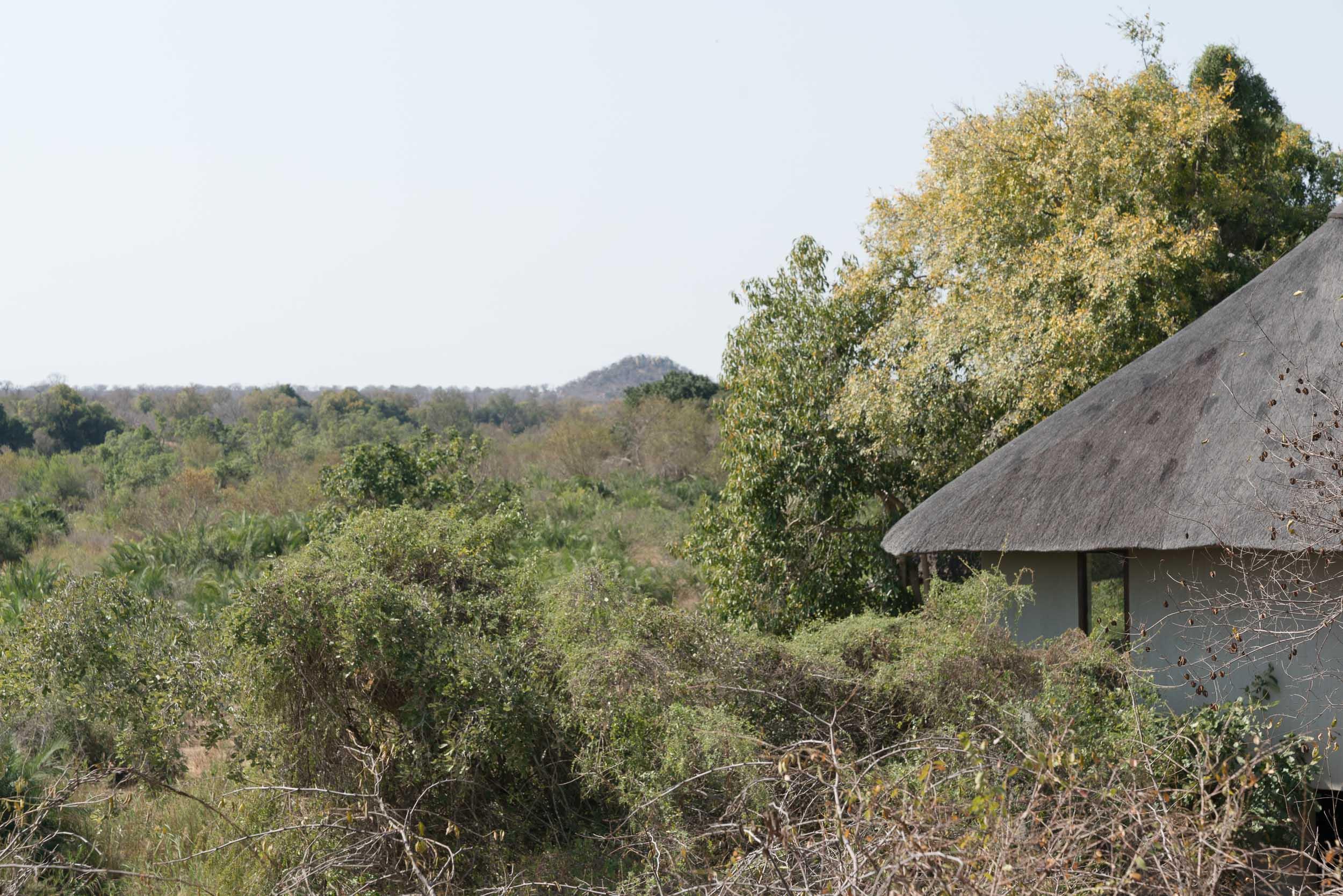 the_getaway_edit_south_africa_safari_londolozi_game_reserve-46.jpg