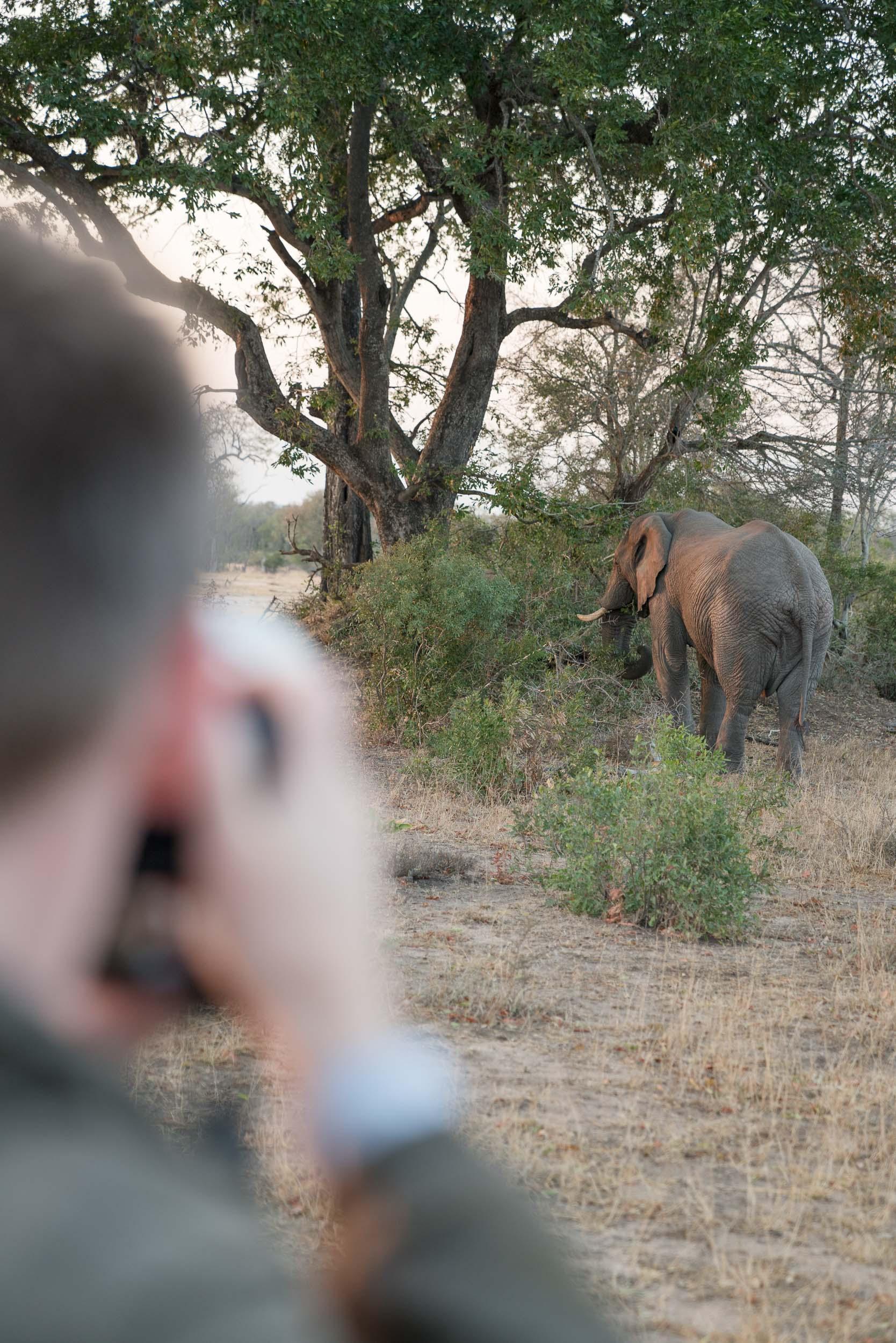 the_getaway_edit_south_africa_safari_londolozi_game_reserve-35.jpg