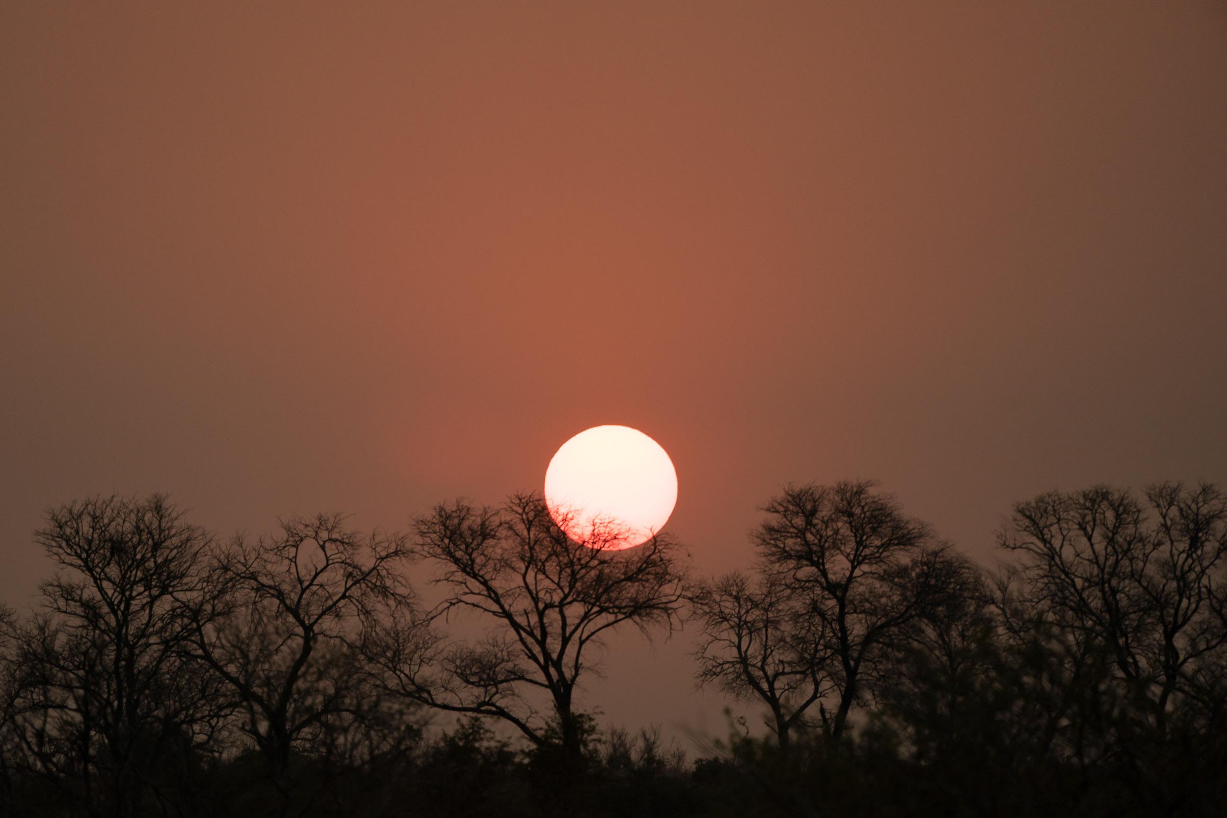 the_getaway_edit_south_africa_safari_londolozi_game_reserve-33.jpg